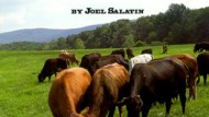 Meet the Farmer – Joel Salatin Part 3