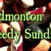Seedy Sunday Edmonton